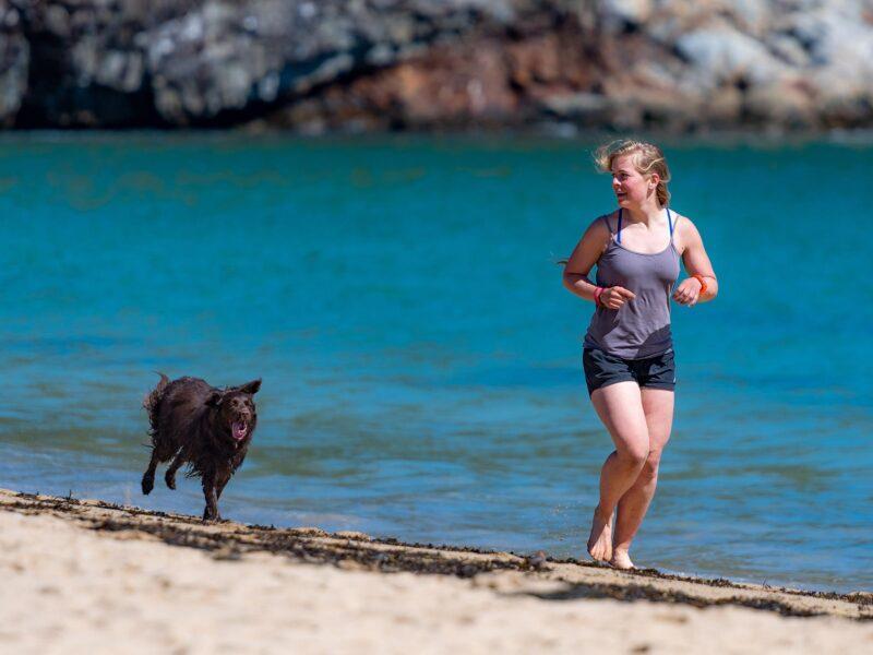 Tag din hund med på løbeturen – Den vil elske det!
